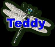Guldsmed Teddy